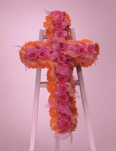 Rose and gerbera cross