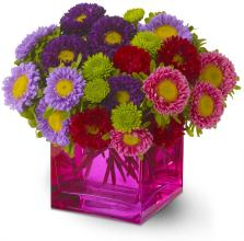 Asters bouquet