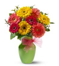 Gerbera in a ginger vase bouquet